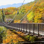櫪木那須高原|賞楓景點推薦!長130m 高38m 「つつじ吊橋」