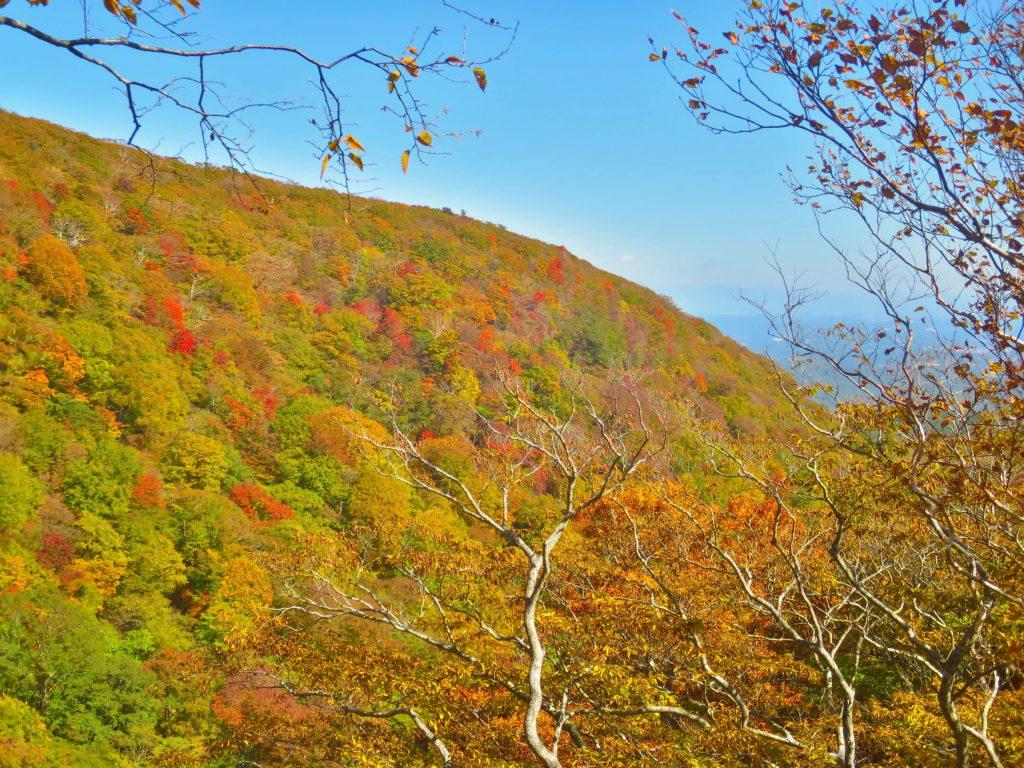 栃木那須|平成之森公園秋季絕景「駒止之瀧」青藍白涓瀑布漸層楓葉