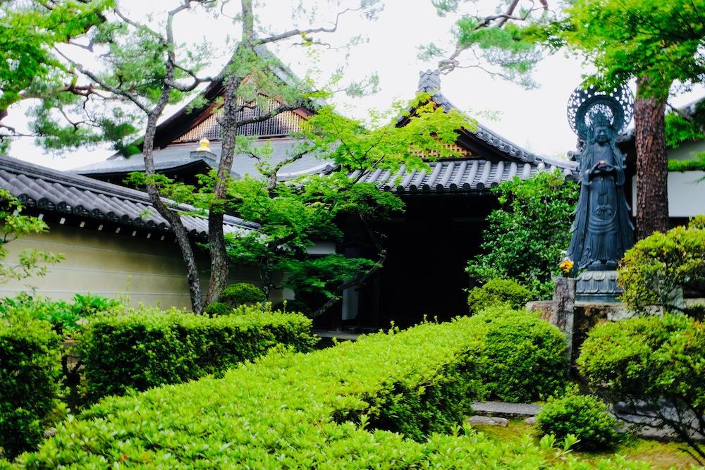京都盛夏避暑好去處:妙心寺日本庭園「退藏院」、「桂春院」