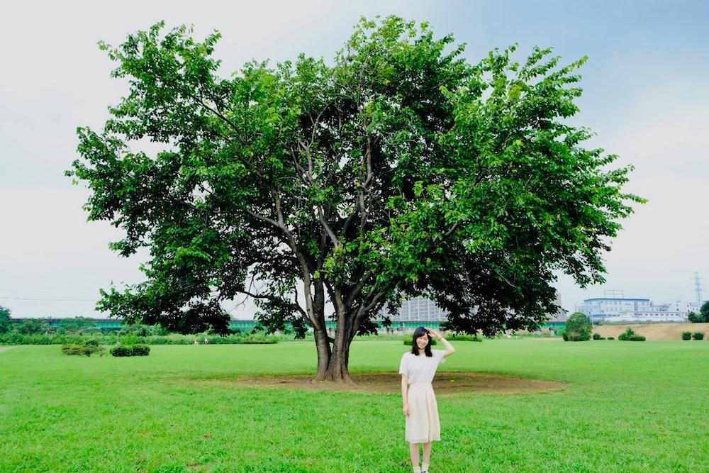 【隨時更新】2019夏季日劇「凪的新生活」拍攝地實際走訪!