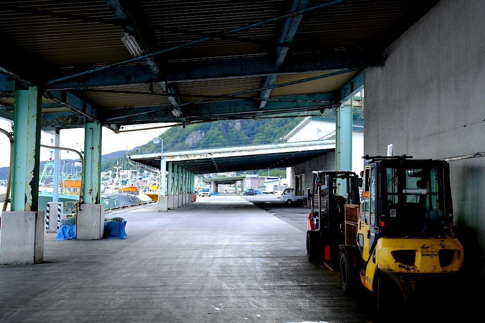北海道採訪日記:羅臼市場競標見學,深入體驗在地魚市場