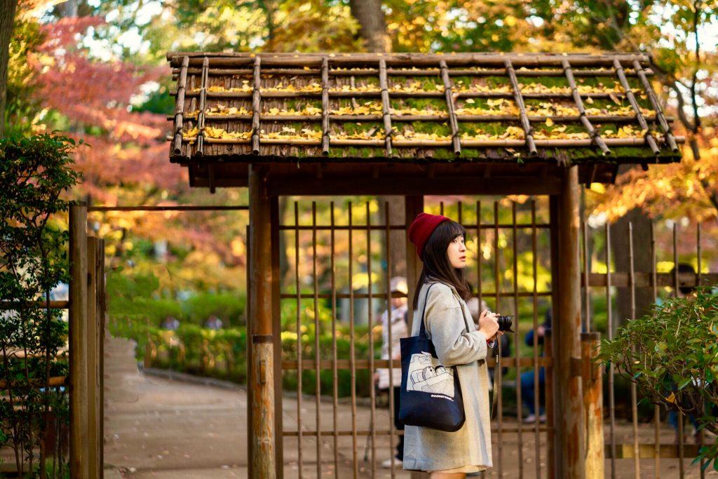 東京免費私藏賞楓.銀杏景點:荻窪「大田黑公園」