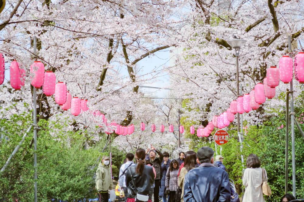 中野 新井藥師公園 春季祭典