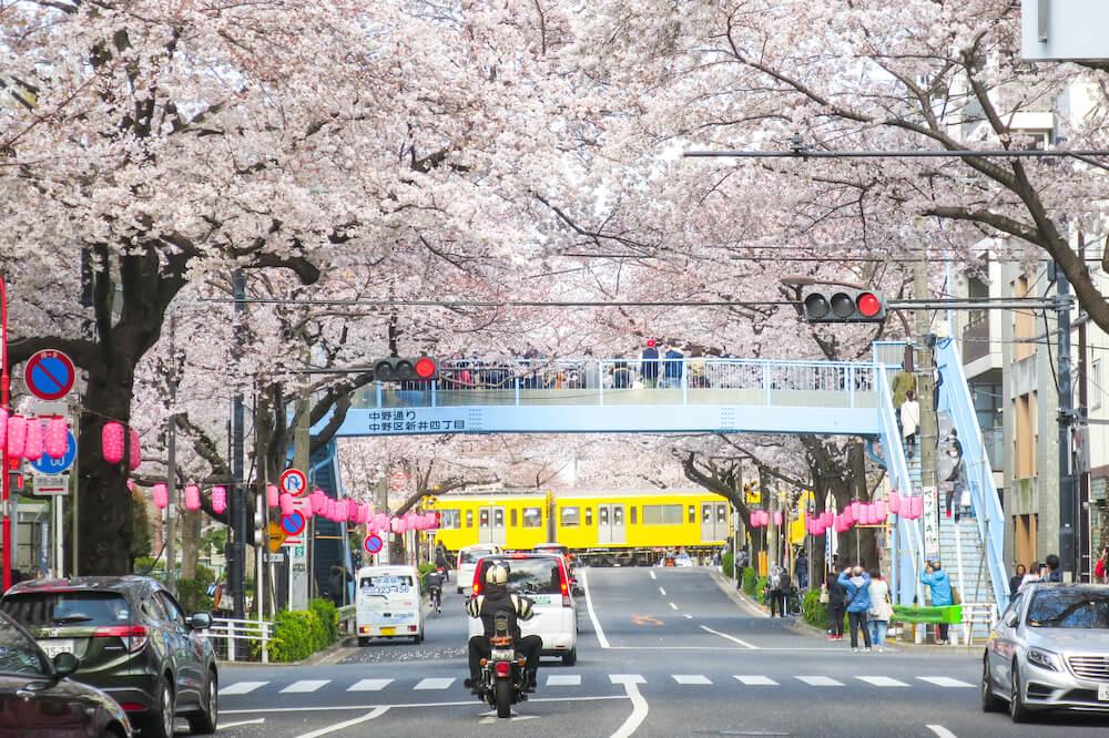 中野天橋 拍攝黃色路面電車