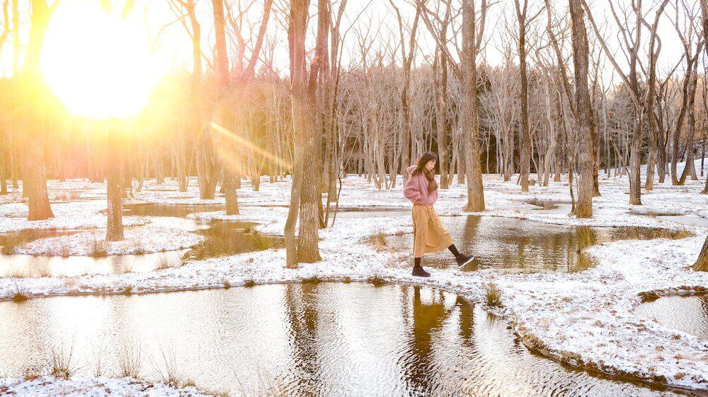 栃木・那須Art Biotop,漫步在石上純也「水庭」中,用心感受建築融合自然的溫柔
