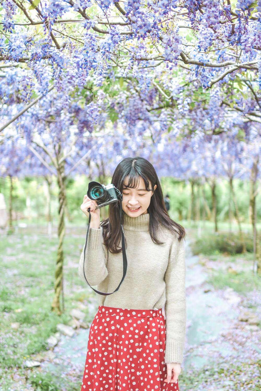 淡水 紫藤咖啡園