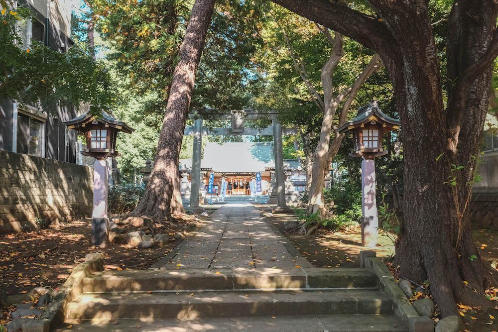 日劇《妖怪合租屋》場景踩點・杉並區「下高井戶八幡神社」