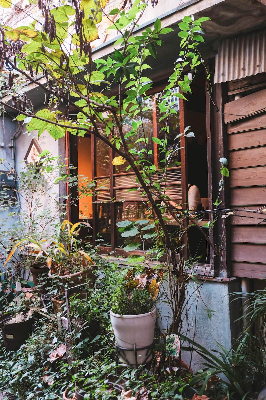 日劇《竹內涼真的攝休》取景地:東京押上古民家咖哩・創造空間「SPICE Cafe」