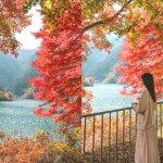 埼玉飯能・名栗湖紅葉