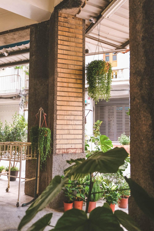 新開幕!中山區咖啡廳「HERE &U」:三坪老屋改造小空間,綠意圍繞巷弄秘密基地29