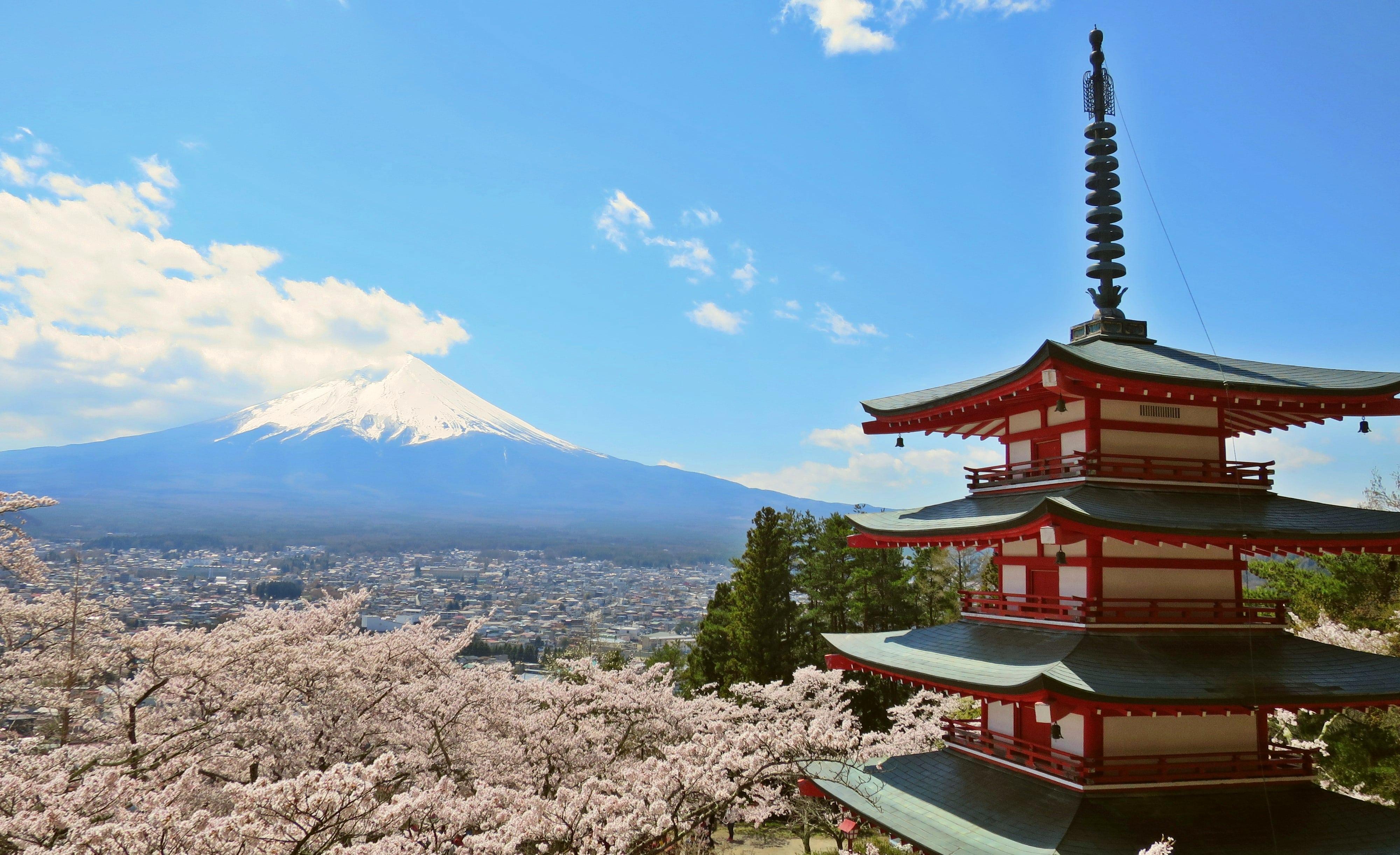 櫻花+富士山+忠靈塔!「新倉山淺間公園」交通景點整理