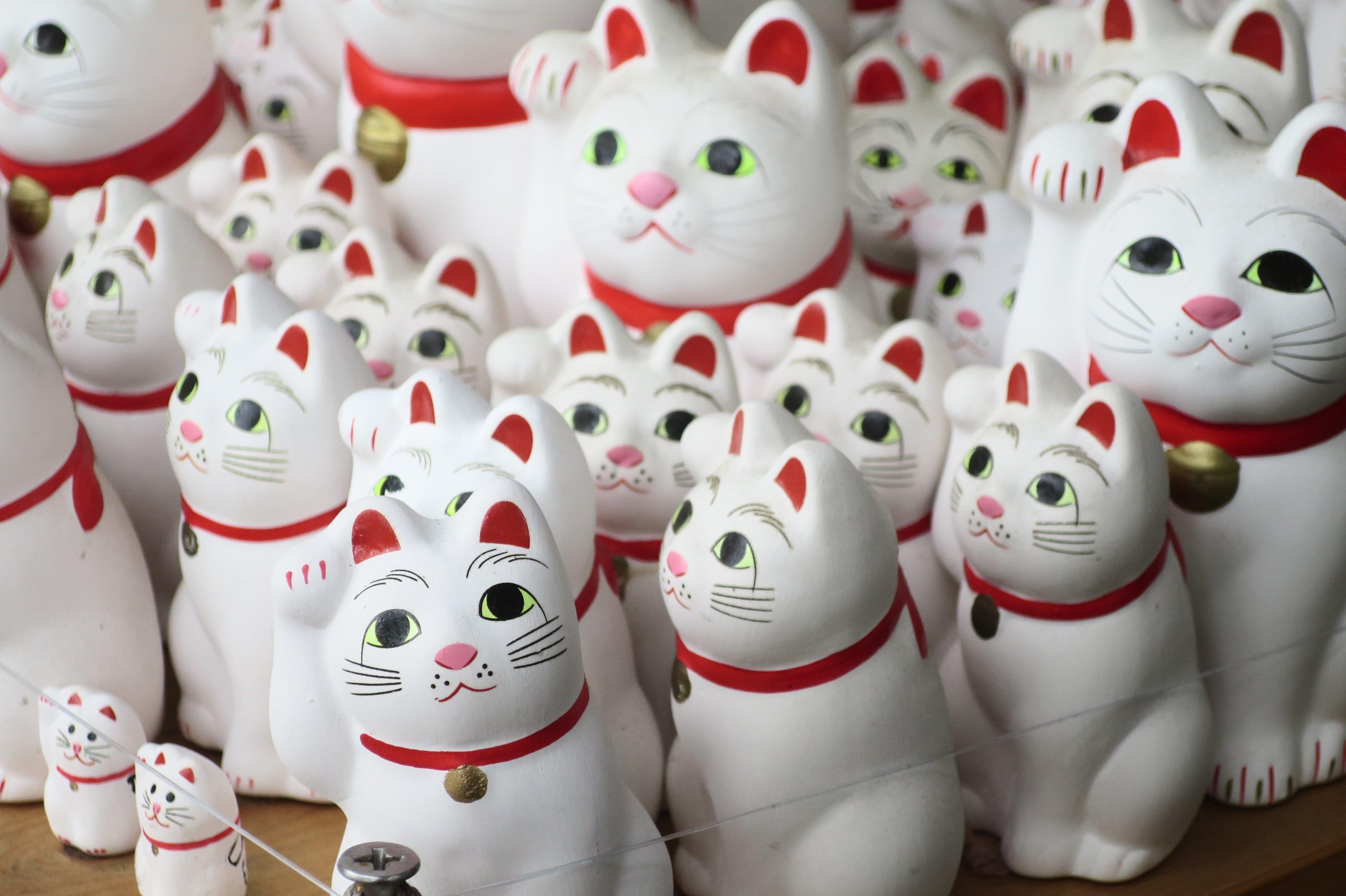 豪德寺招財貓