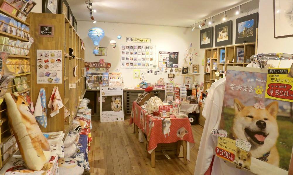 【東京景點】柴犬MARU丸太郎專賣店!東京根津Gallery MARUSAN